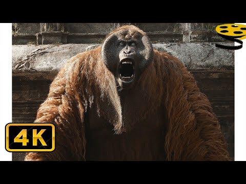 Побег от Орангутанга Луи | Книга джунглей (2016) 4K ULTRA HD