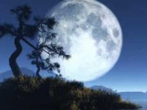 3rd Force ft Rick Braun - In The Full Moonlight *k-kat jazz café*