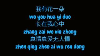 梅艳芳 (Anita Mui) - 女人花 (Woman Flower) (Simplified 简体 Chinese / Pin Yin 拼音 Lyrics)
