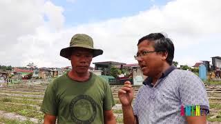 Hiện trạng nghĩa trang quân đội Việt Nam Cộng Hòa tại Gia Lai