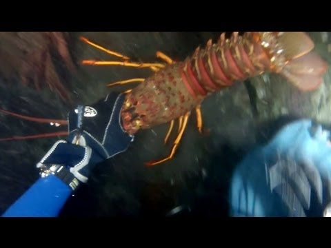 More Lobster Hunting And Kayak Diving With GoPro