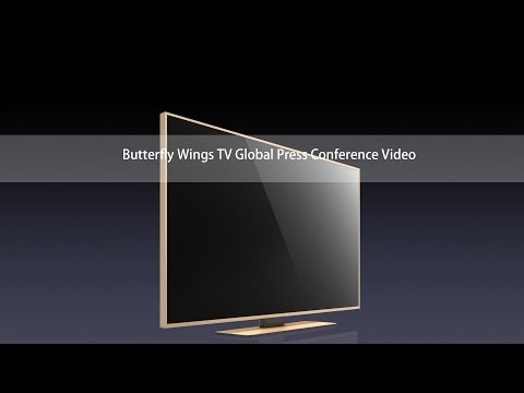 ButterflyWings TV Global conference video FHD