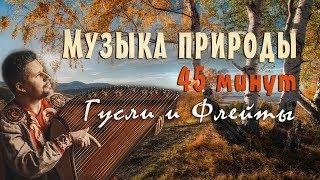 Красивая музыка природы слушать 45 минут 🌿 Русские гусли & Флейты.  Музыка для сна и отдыха!