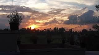 Убуд Бали 2019 рассвет