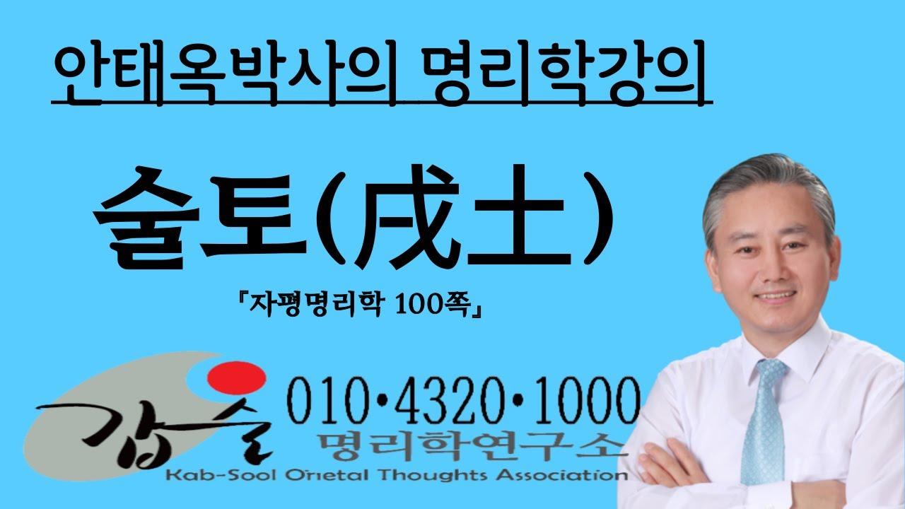 술토(戌土)의 특성과 심리(지지)-자평명리학100쪽-갑술명리학-안태옥박사의 사주강의
