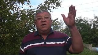 видео Краснодар | Почему инвесторы выбирают Кубань - БезФормата.Ru - Новости