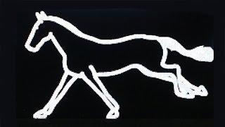 Julian - Opie - Galloping Horse - Yorkshire Sculpture Park - June 2016