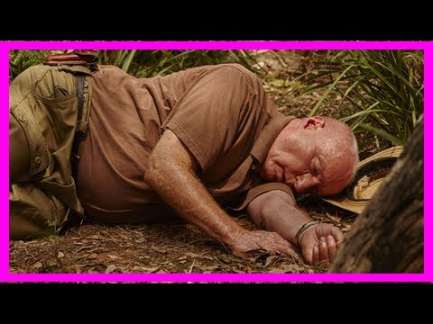 Home and away spoilers: alf stewart is brutally attacked and the morgans have a terrifying car crash