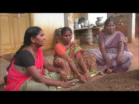 Trichoderma viridi culturing_DoAg&DigitalGreen_Oct-2016_Krishna_A.P.