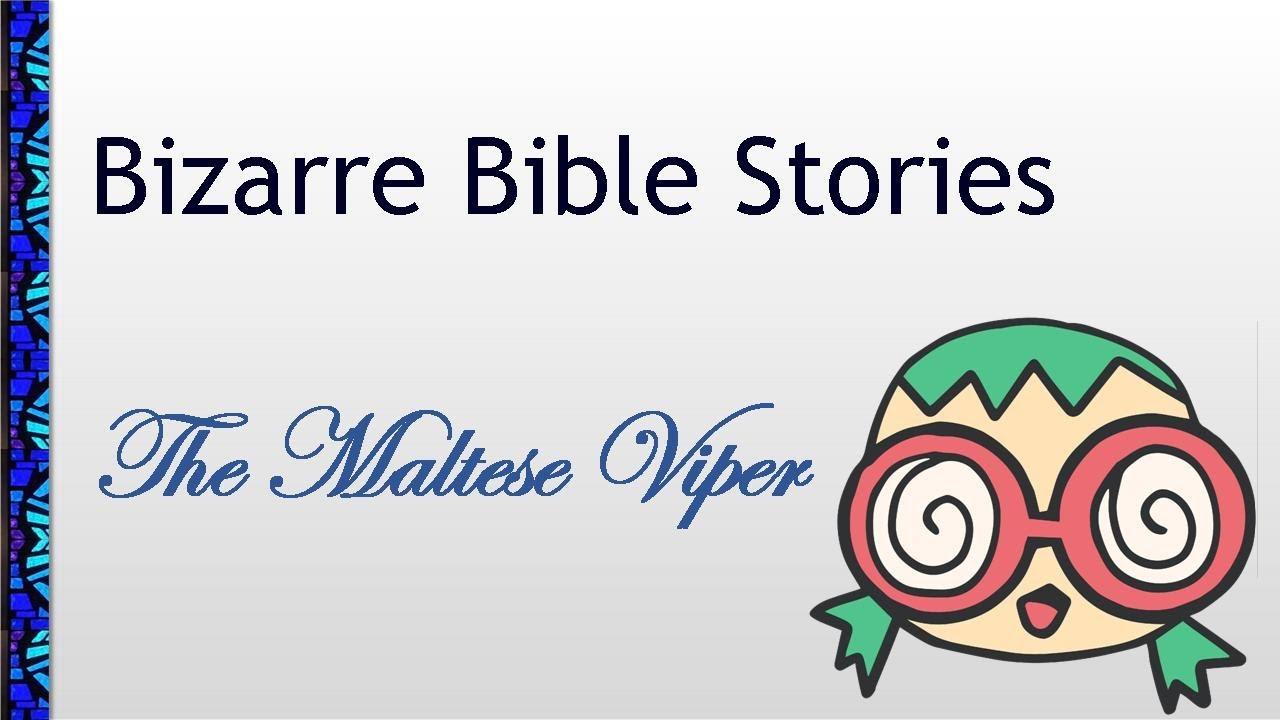 July 11, 2021 Service: Bizarre Bible Stories: The Maltese Viper (Replay)