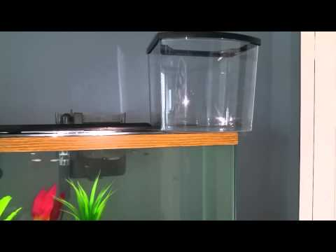 Glass vs plastic aquarium fish tank youtube for Acrylic vs glass fish tank