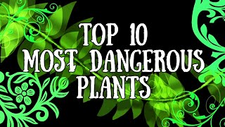 10 Most Deadliest Plants In The World | Lab 360