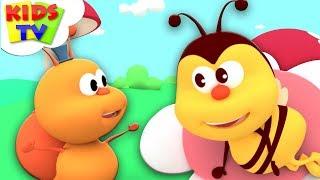 With The AAA | Kids Songs & Nursery Rhymes | Cartoons For Babies - Kids Tv