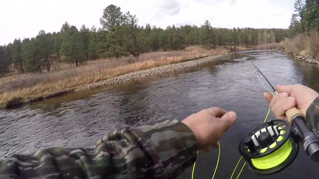 Fishing in deckers colorado youtube for Deckers co fishing report