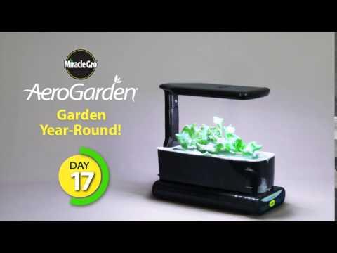 AeroGarden Sprout LED Time Lapse