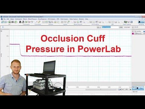 Blood Pressure Cuff In PowerLab