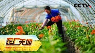 《农广天地》 20190522 盐碱地种出致富果| CCTV农业