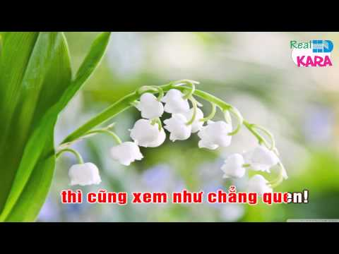 Một Lần Dang Dở - Quang Lê - Karaoke HD