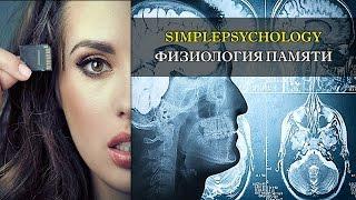 видео Память как психический процесс (Psyarticles.ru)