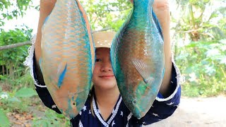 Yummy Parrot Fish Steaming Recipe - Parrot Fish Cooking Sauce - Cooking With Sros