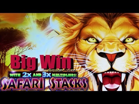 Safari Stacks Slot win First attempt multipliers Big Win at San Manuel Casino