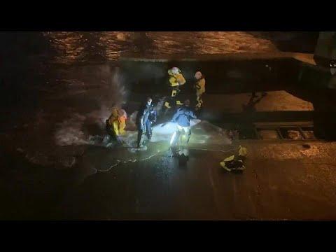 شاهد: القضاء على حوت جنح وعلق في نهر تيمز في لندن  - نشر قبل 3 ساعة