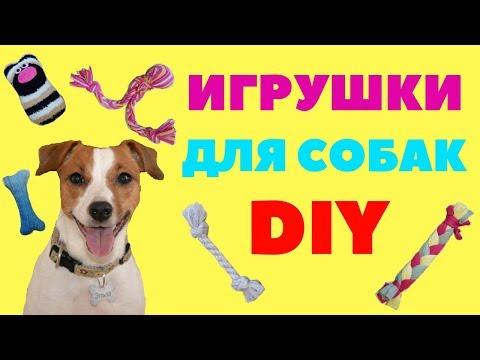 Как сделать игрушку для собаки видео