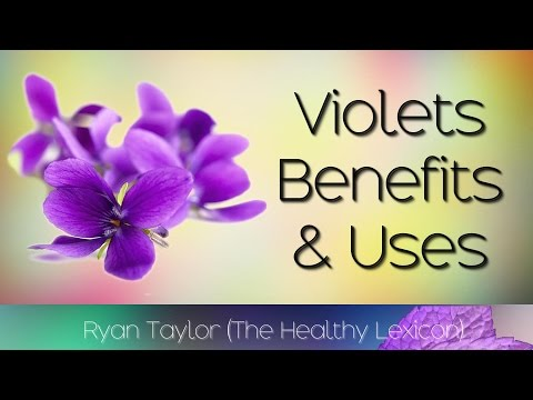 violets-flowers:-benefits-&-uses