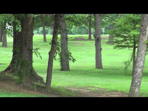 Tulsa Disc Golf - McClure Park