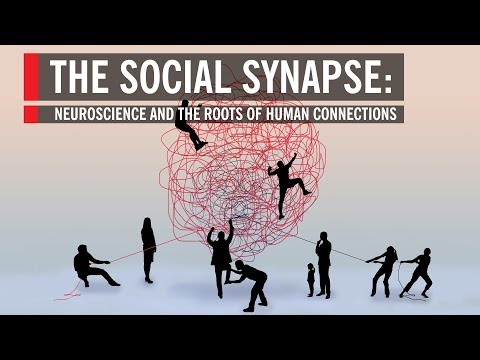 The Social Synapse: Neuroscience and the Roots of Human Connections