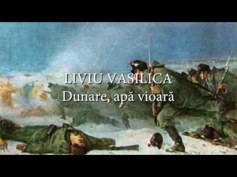 Liviu Vasilica - Dunare, apa vioara (versuri, lyrics, karaoke)