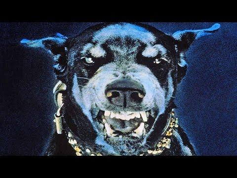 最も危険な犬種25種類