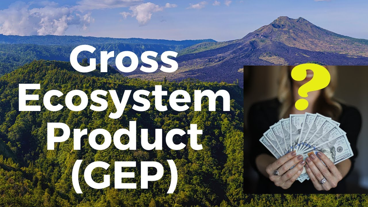 Download What is Gross Ecosystem Product (GEP) ?