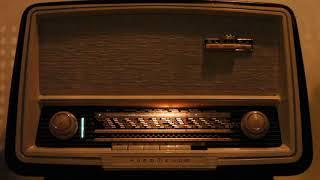 1960년대 감성으로 듣는 진공관라디오 #짙은