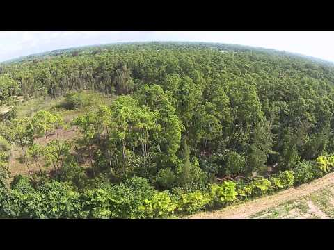 40 Acre Loxahatchee Aerial Survey 5