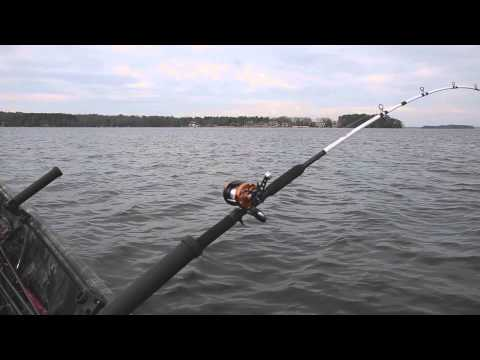 Abu Garcia C3 Catfish Special Round Reel Product Review