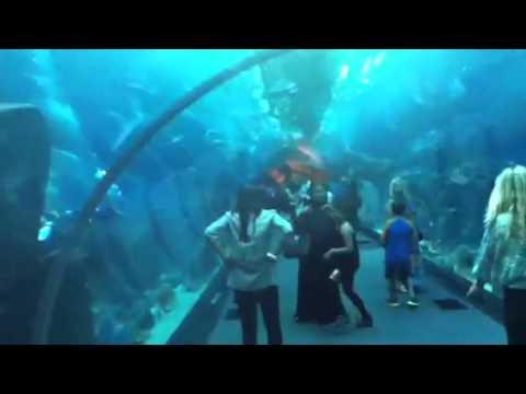 Dubai underwater tunnel