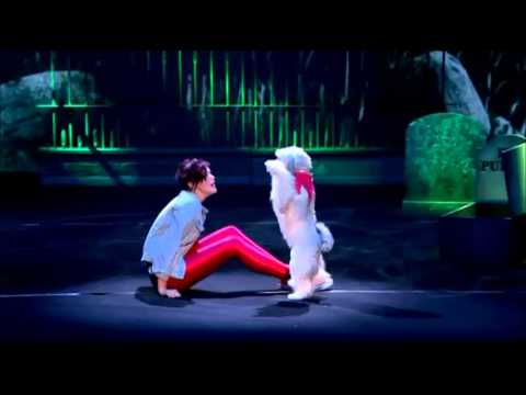 Ashleigh & Pudsey - Thriller Routine (Britain's Got Talent 2013)