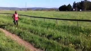 Allenamento su pista in terra battuta   Rosia