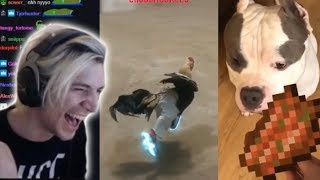 xQc Reacts to UNUSUAL MEMES COMPILATION V44