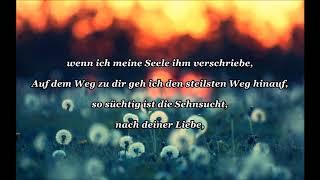 Roland Kaiser-Im 5. Element (Lyrics und Wunschvideo)