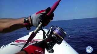 Shimano Stella 30000 sw & Xzoga Taka si 600 5518 Tuna Tonno drifting - Majav