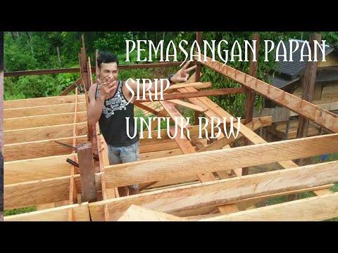 Cara Pasang Sirip Sarang Walet Kalimantan Tengah