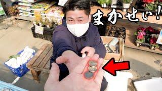 魚のプロに300円差し出したら、すごい海鮮セットが買えた!