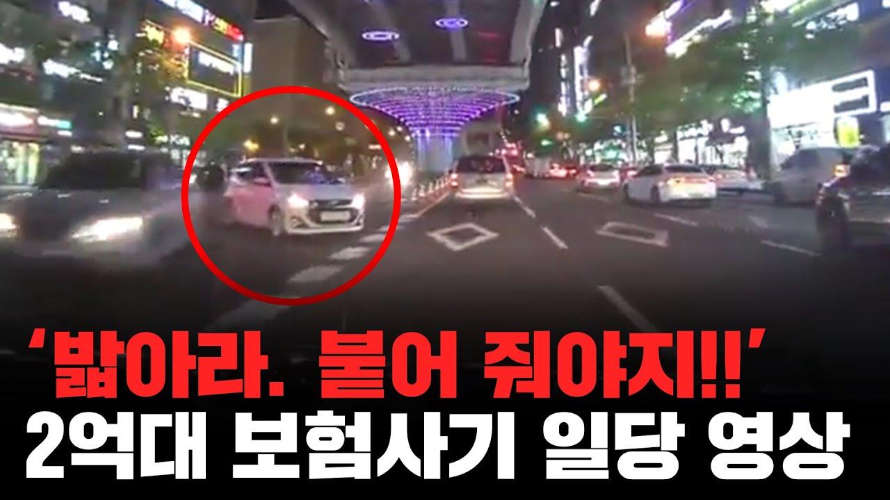 교통법규 위반 차량만 노려 '고의 교통사고' 보험사기 일당 적발