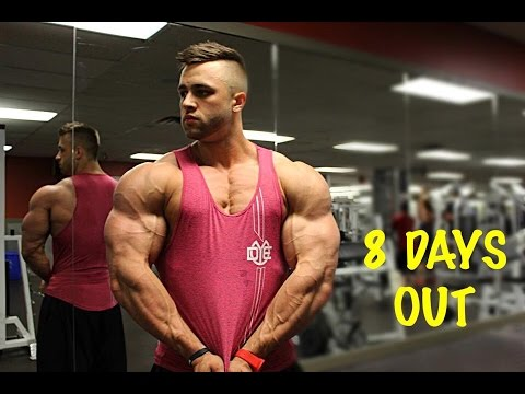 2a4d4f64d4a632 BODYBUILDER DAY IN THE LIFE - 8 DAYS OUT - Regan Grimes - YouTube