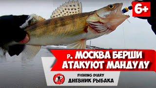 Рыбалка в ФЕВРАЛЕ 2020 Москва река в ГЛУХОЗИМЬЕ Зимний СПИННИНГ