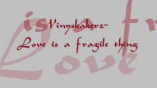 Vinylshakerz - Love is a fragile thing