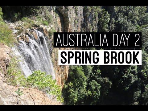 VLOG: Gold Coast, Australia Day 2 | Springbrook National Park