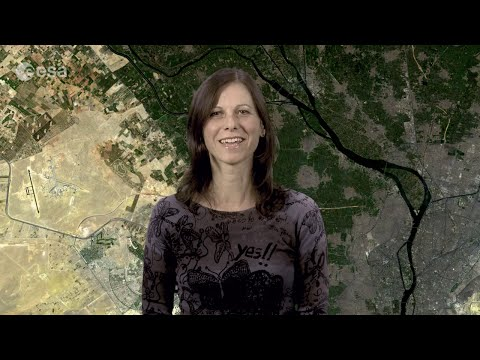 Earth from Space: Nile Delta fertility